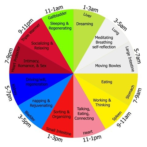 Body Clock Wellpoint Acupuncture North Finchley London