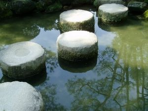 zen detox